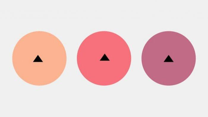 Tes Kejelian Mata: Segitiga Mana yang berada Tepat di Tengah Lingkaran?